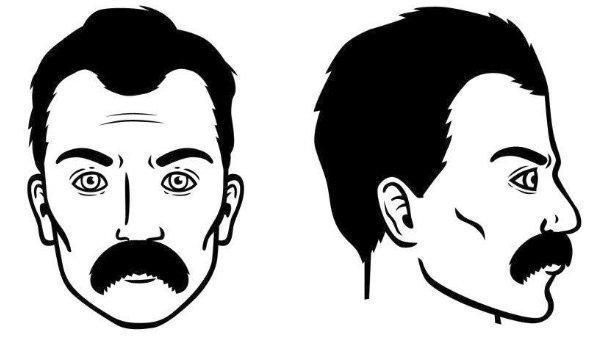 bigote-de-morsa