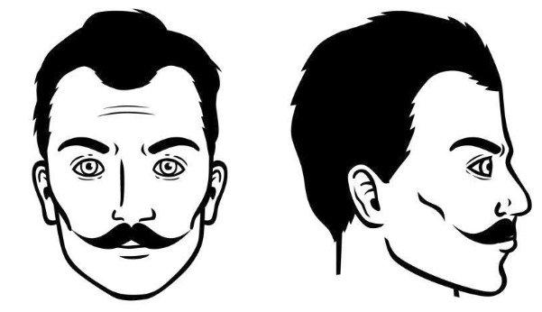 bigote-ingles