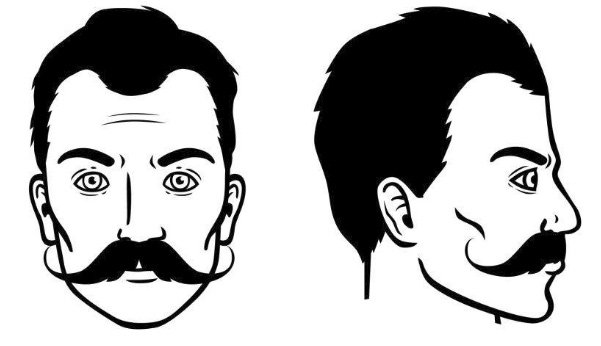 bigote-hungaro